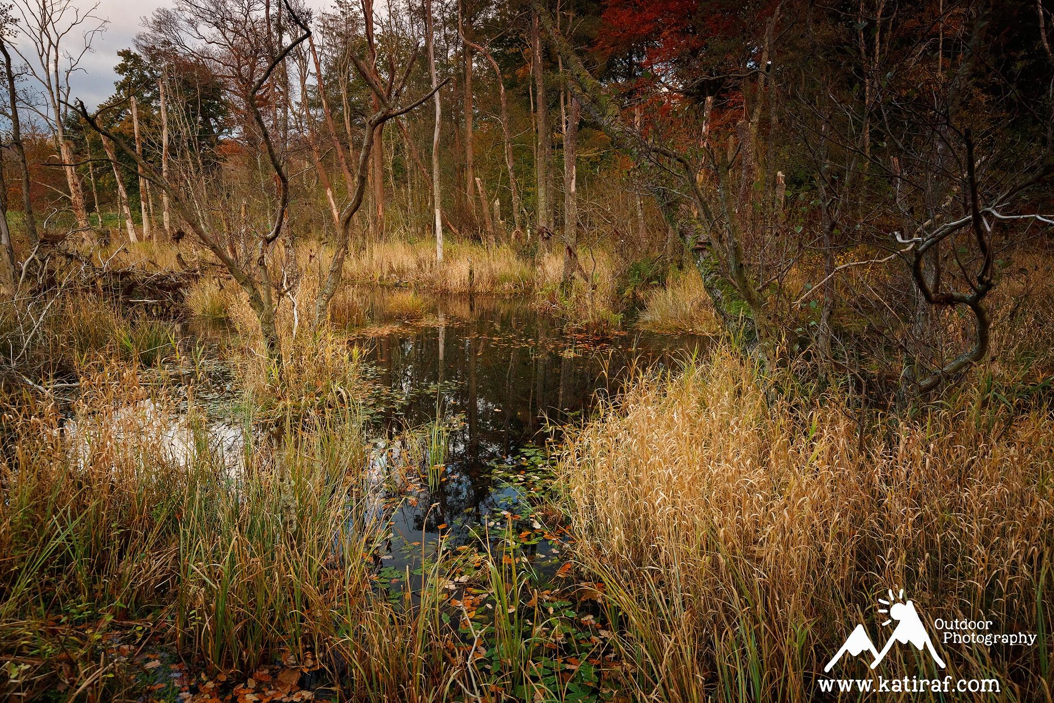 katiraf-lake-district-derwentwater