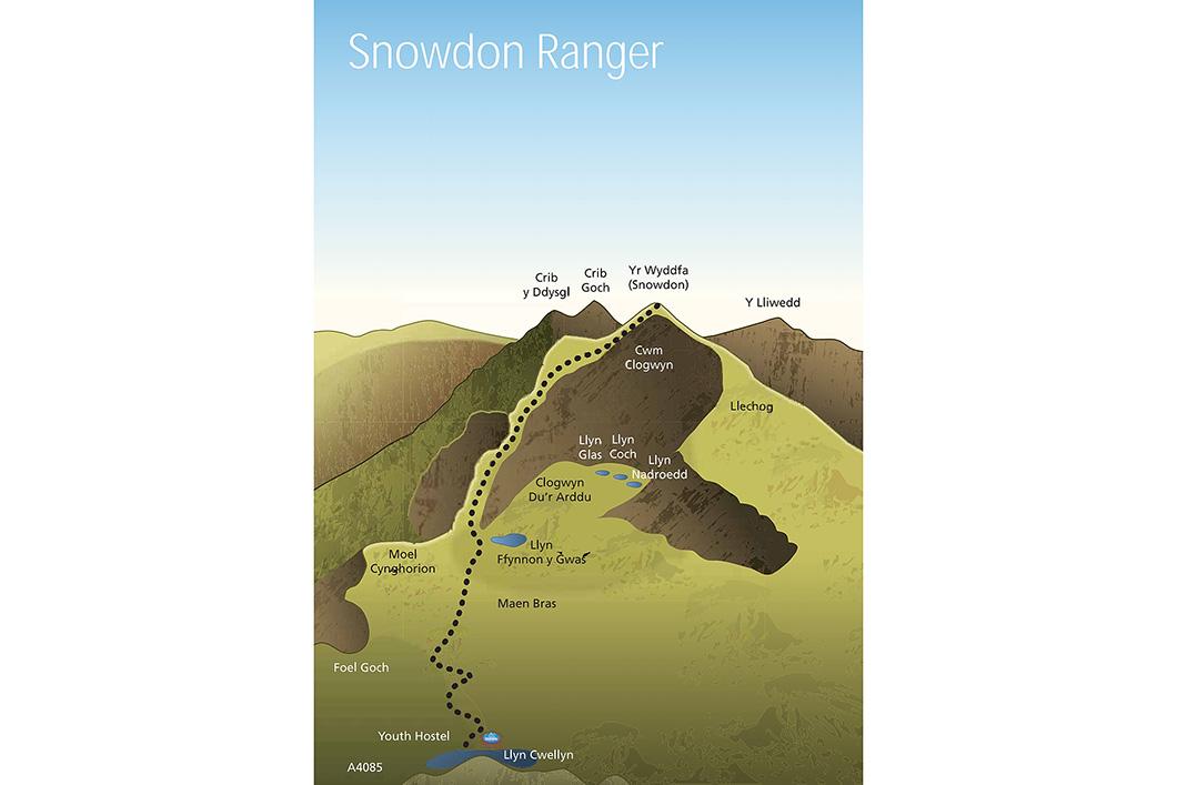 Snowdon Ranger