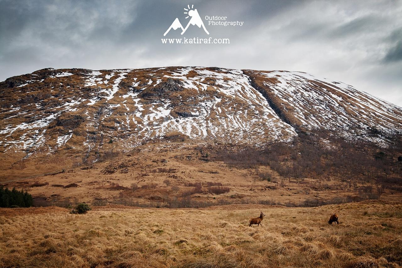 Glen Etive, Szkocja, www.katiraf.com