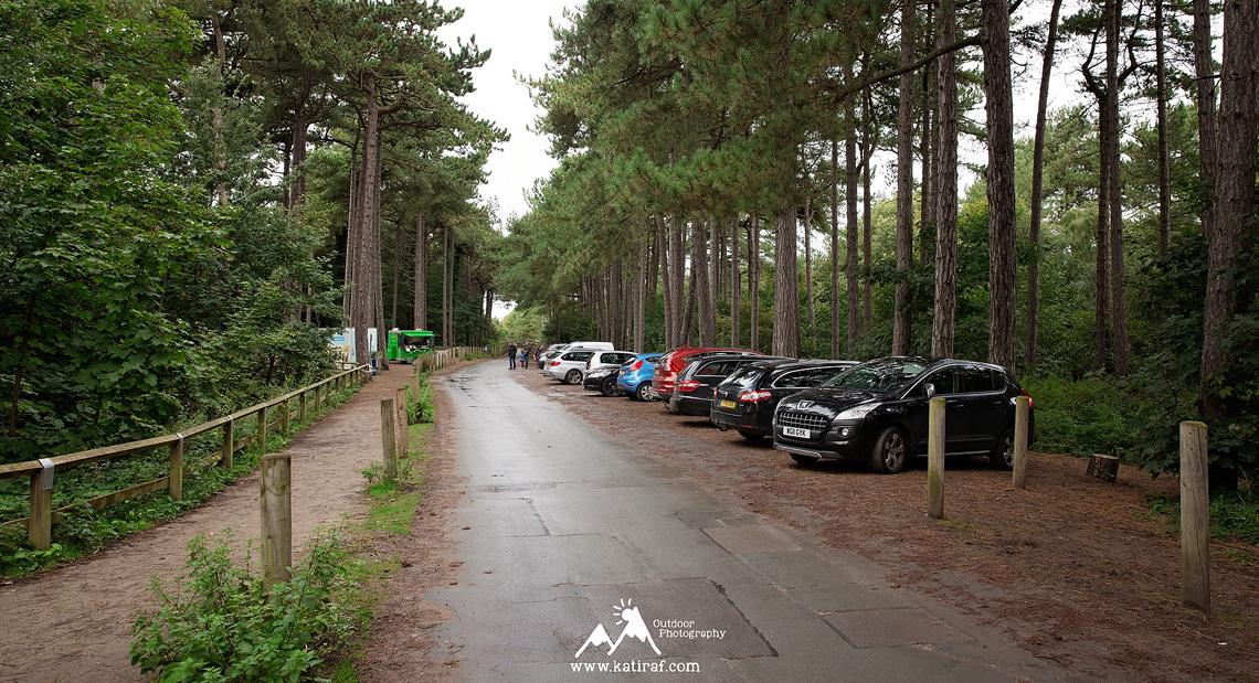Plaza w Formby, rezerwat rudych wiewiórek, www.katiraf.com