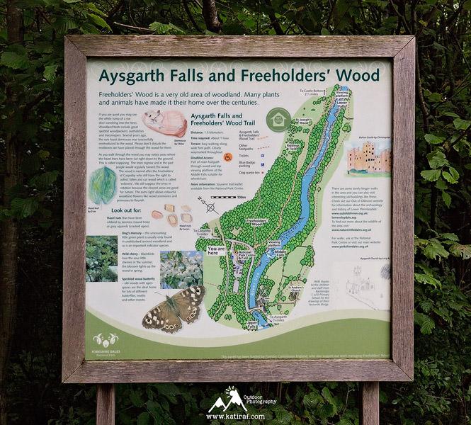 Wodospady Aysgarth Falls, Park Narodowy Yorkshire Dales, Anglia www.katiraf.com