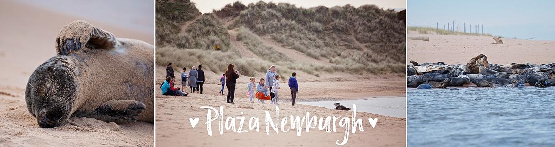 Plaża Newburgh, Szkocja, katiraf.com