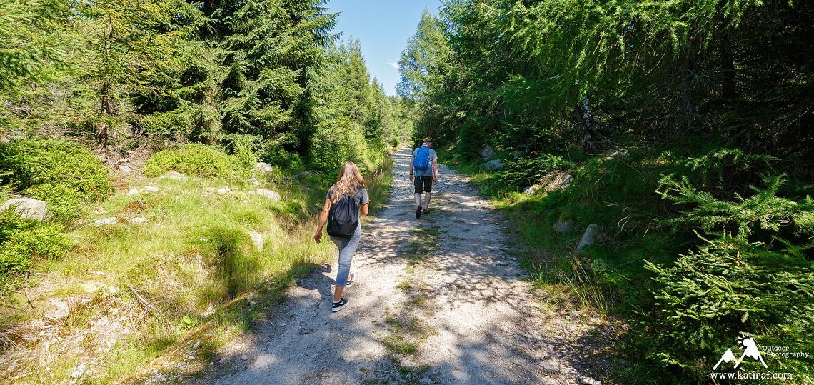 Wędrówka z Jakuszyc na Halę Szrenicką zielonym szlakiem i do Szklarskiej Poręby