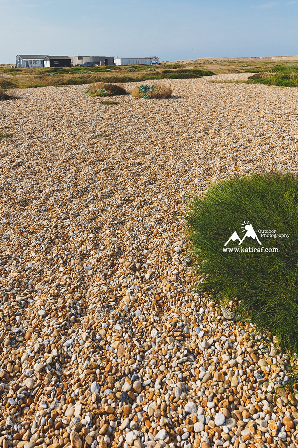 Przylądek Dungeness, Kent, www.katiraf.com