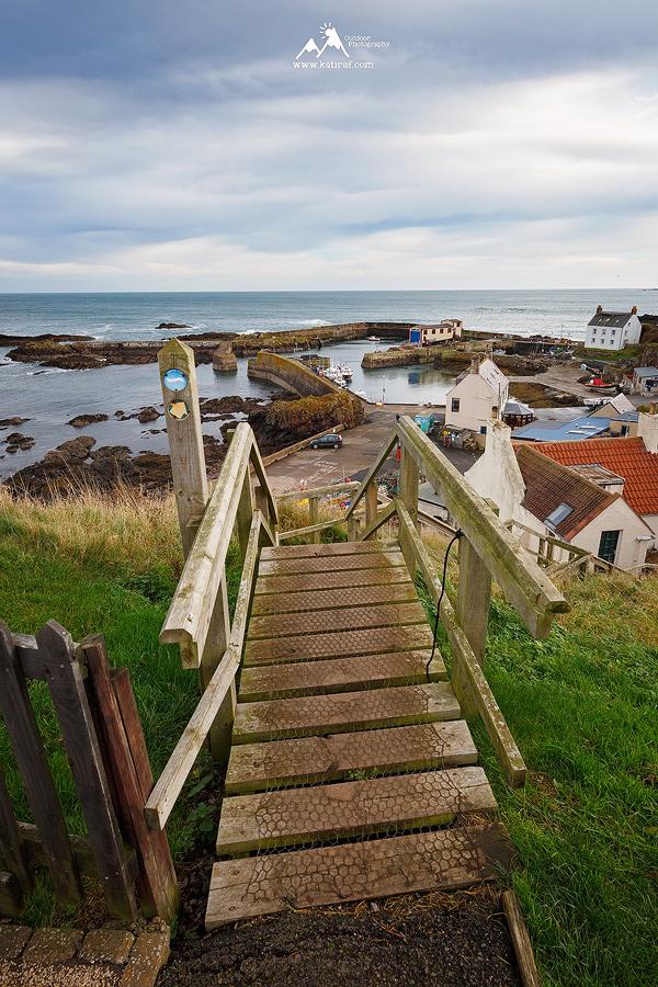 WieÅ› i klify St. Abbs, Berwickshire, Szkocja www.katiraf.com