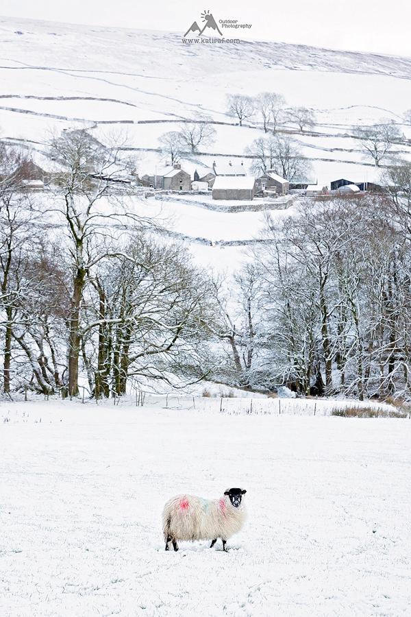 Wędrówka na Pen-Y-Ghent, Yorkshire Dales, www.katiraf.com